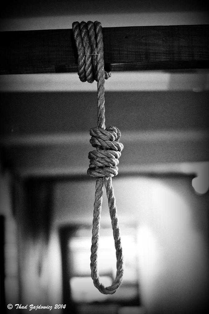 noose photo