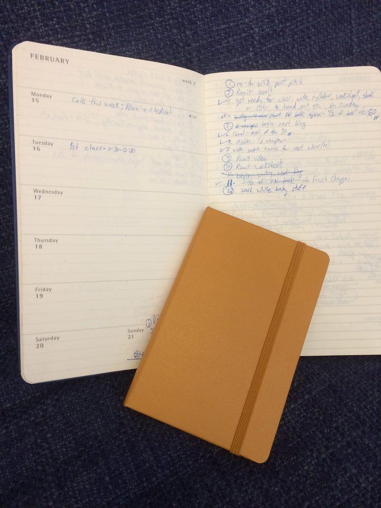 Moleskine diaries